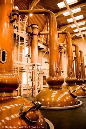 fruit distillation process